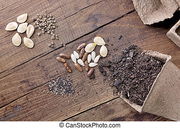 zaden, emmer, seedlings