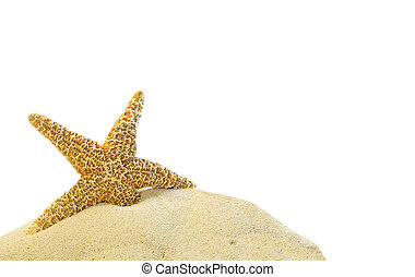 zand, zeester, heuvel, enkel