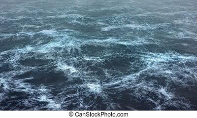 zee, storm
