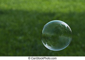 zeepbel, gras, vliegen, voorkant