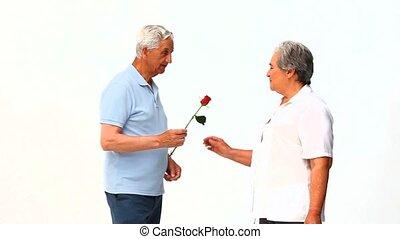 zijn, vrouw, offergave, roos, man