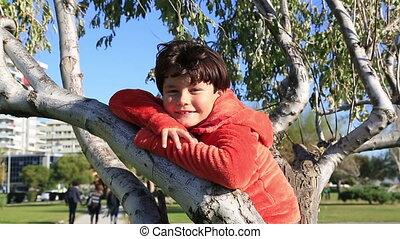 zittende , boompje, jongen, vrolijke , jonge