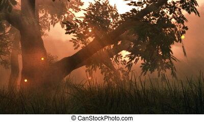 zomer, (1141), weide, fantasie, magisch, lichten, hout, elfje, fireflies
