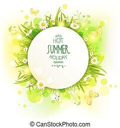 zomer, bloemen, achtergrond, licht