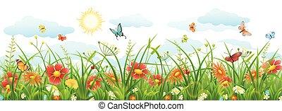 zomer, bloemen, gras