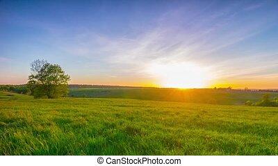 zomer, landscape, ondergaande zon , pan