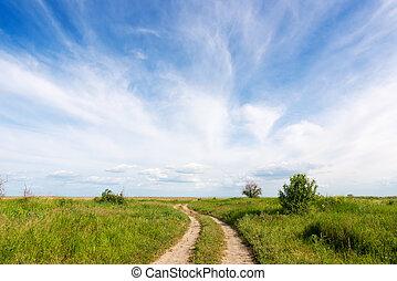 zomer, landscape, straat, land