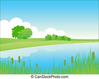 zomer, rivieroever, landschap.