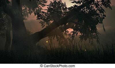 zomer, weide, fantasie, magisch, (1145), lichten, hout, elfje, fireflies, lus