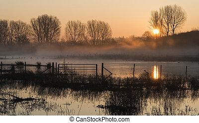 zon, meer, zonopkomst, mist, landscape, gloed