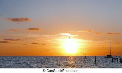 zon, op, caraïbische overzees, opstand
