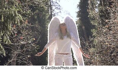 zon, witte engel