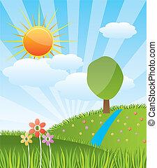 zonnig, landscape, bos, lente