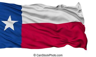 zwaaiende , nationale vlag, vrijstaand, texas