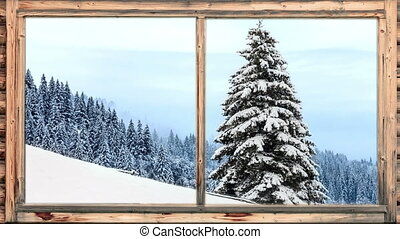 zware, bosrijk, sneeuw, het vallen, gebied