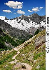 zwitser alpen